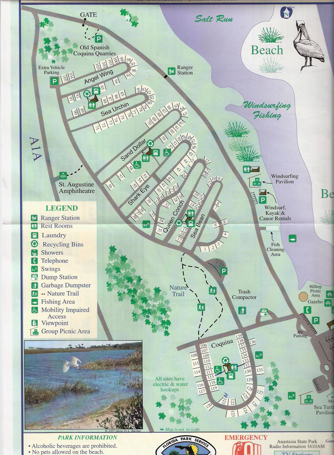 Campground Map Anastasia State Park St Augustine Florida
